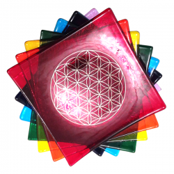 Set of 7 Chakra Balancing Platinum Flower of Life glass plates