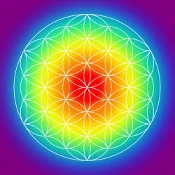 Flower of Life Radiating Chakras Print